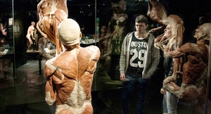 Body World Amsterdam 2