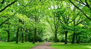Tiergarten edwin 11 flickr