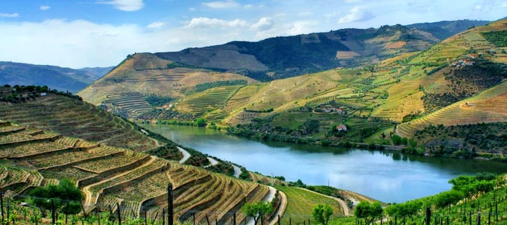 Tour delle enoteche e degustazione dei vini più importanti del Portogallo