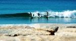 Costa da Caparica Surfisti foto di Gustavo Verissimo