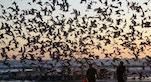 Costa da Caparica foto di iketaka