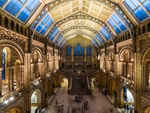 Natural History Museum lozwilkes flickr
