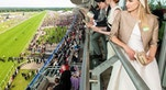 royal ascot horse race london TNT Magazine