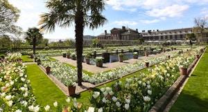 kensington palace diana1 a