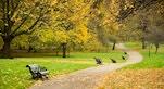 green park londra