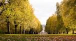 parchi spazi verdi londra
