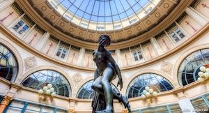 Galerie Colbert Loic Lagarde flickr