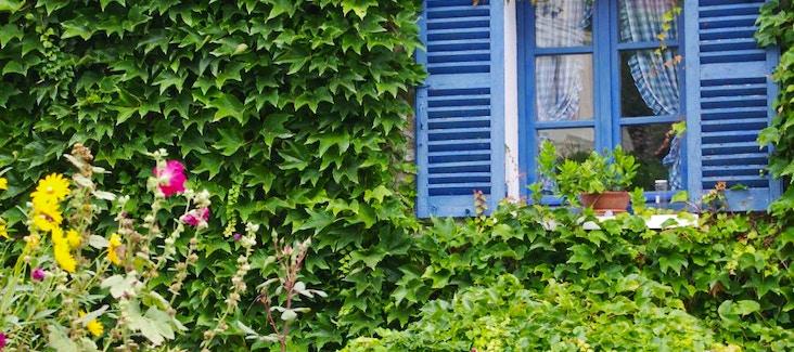 Prenota la Giornata Monet con trasporto a Giverny incluso