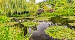 Giardini di Monet Ninfee