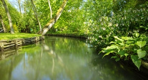 Giardini di Monet fiume 1