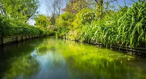Giardini di Monet fiume 3