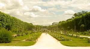 Jardin des Plantes gyg
